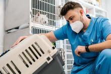 Veterinarian Examining The Cat Transport Box In A Veterinary Cli