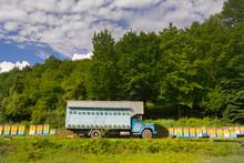 Honey Bee Truck