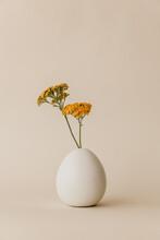 Orange Flower In Vase