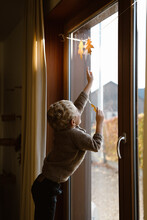 Toddler Boy Trying To Touch Waxed Fall Leaves Hanging In The Window Sill