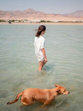 Woman Walk In The Sea With Her Dog