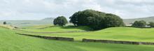 Yorkshire Dales Wensleydale Fields