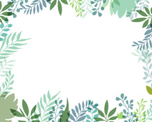 手描きタッチのシンプル草木フレー背景 Set Hand Drawn White Isolated Background. Botanical Illustration. Decorative Botanical Picture.