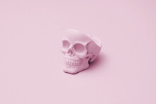 Pink Human Skull On The Light Pink Background