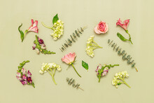Flowers Assembled On Green Background