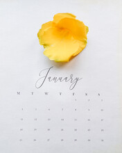 Calendar Page For January