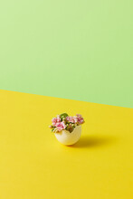 Easter Eggshell With Blooming Flowers