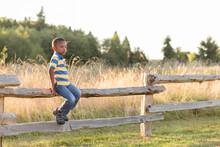 Black Boy Perches On Split Rail Fence