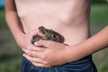 Boy With Baby Rabbit