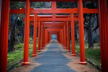 鳥居, 建築, 日本, 坂道, 神社
