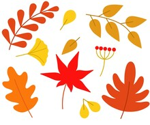 Autumn Leaves Or Autumn Foliage Icons. Set Of Maple, Oak Or Birch And Rowan Leaves. Autumn Leaves Are Suitable For The Design Of Seasonal Holiday Cards, Social Networks, Advertising, Email Marketing.