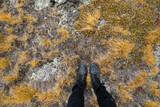 Hiking Boots with Alpine Tundra