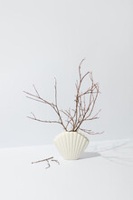 Dried Twigs In Ceramic Vase In Shape Of Shell