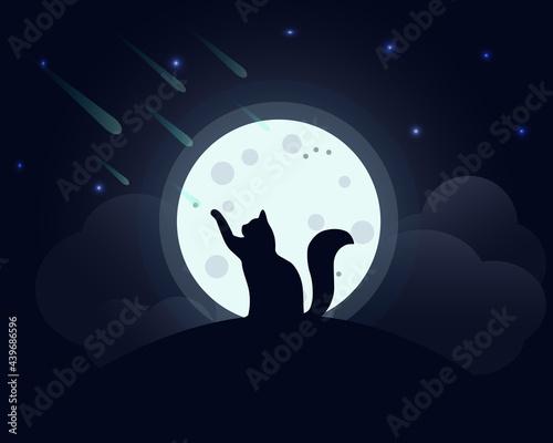 Fotografie, Obraz Cat in the moonlight