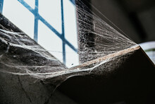 Spider Web Hanging Between Wall And Windowsill