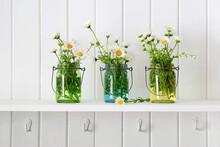 Three Glass Jars Of Daisies On Shelf