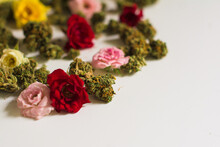 Beautiful Colorful Flowers And Cannabis Buds