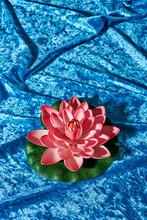 Fake Lotus Flower