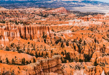 Hikers Weave Through The Hoodoos On The Queen's Garden Trail, Bryce Canyon National Park, Utah, USA