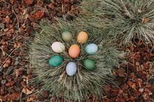 Easter Eggs Hiding In Grass