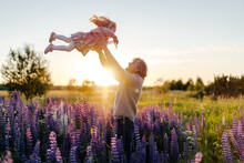 Father Tossing Daughter In Flower Field At Sunset