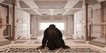 Chimp In Futuristic Room