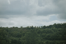 Gloomy Day In The Countryside With Rainy Gray Clouds Above Thick Green Trees On A Hill