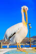 Leinwandbild Motiv Greece, Petros famous pelican of Mykonos