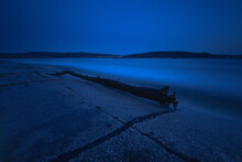 Driftwood Tree Trunk On The Shore At Night