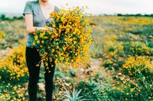 Woman In Field Of Marigolds