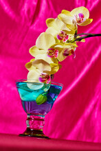 Yellow Orchids Soaked In A Glass Of Water