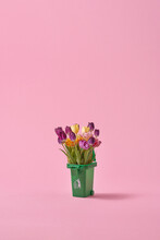 Tulips In Trash Can