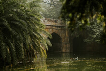 Arched Bridge Over Pond With Among Green Trees