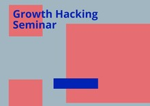 Composition Of Growth Hacking Seminar Text In Blue On Pink Rectangles, With Blue Oblong, Over Grey