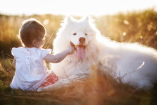 Little Girl With White Dog