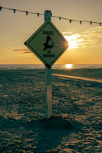Sandy Beach With Sunset In The Background And An Informative Shark Warning Sign In The Foreground