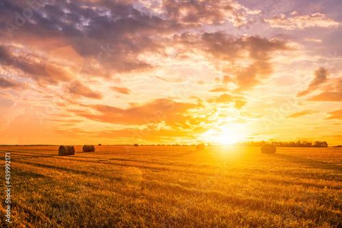 Sunset on the field with haystacks in Autumn season Fototapet
