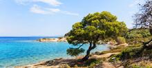 Summer Nature Landscape And Beautiful Seascape
