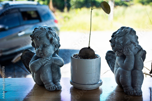 Papel de parede Classic retro vintage children angel statue and small tree pot decorate in moder