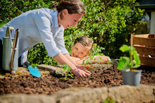 Mother With Son Planting In Garden At Back Yard