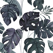Seamless Pattern Of Watercolor Monstera And Palm Leaves