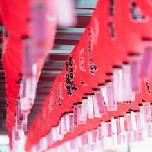Chinese Lanterns Hanging In Rows