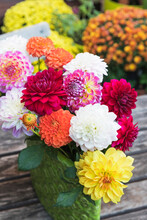 Colorful Dahlia Bouquet In Vase On Garden Table