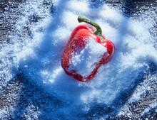 Red Bell Pepper Lying In Snow