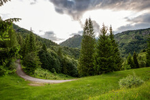Empty Road Amidst Pine Trees And Mountains In Province Of Brescia, Lombardy, Italy