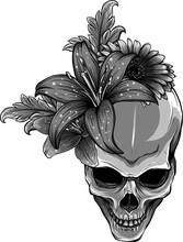Human Skull And Flowers Vector Illustration Design