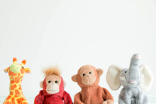 Cute Monkeys And The Gang, Team Of The Doll
