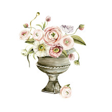 Watercolor Floral Composition. Hand Painted Vase, Anemone, Ranunculus, Pink Peonies Bouquet Set. Flower, Leaves Isolated On White Background. Botanical Illustration For Design, Print Or Background