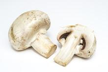 Agaricus Bisporus (Chompignon ) Mushrooms Isolated On A White Background
