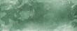 Leinwandbild Motiv Chive herbal green vintage grunge design background, old khaki vintage background